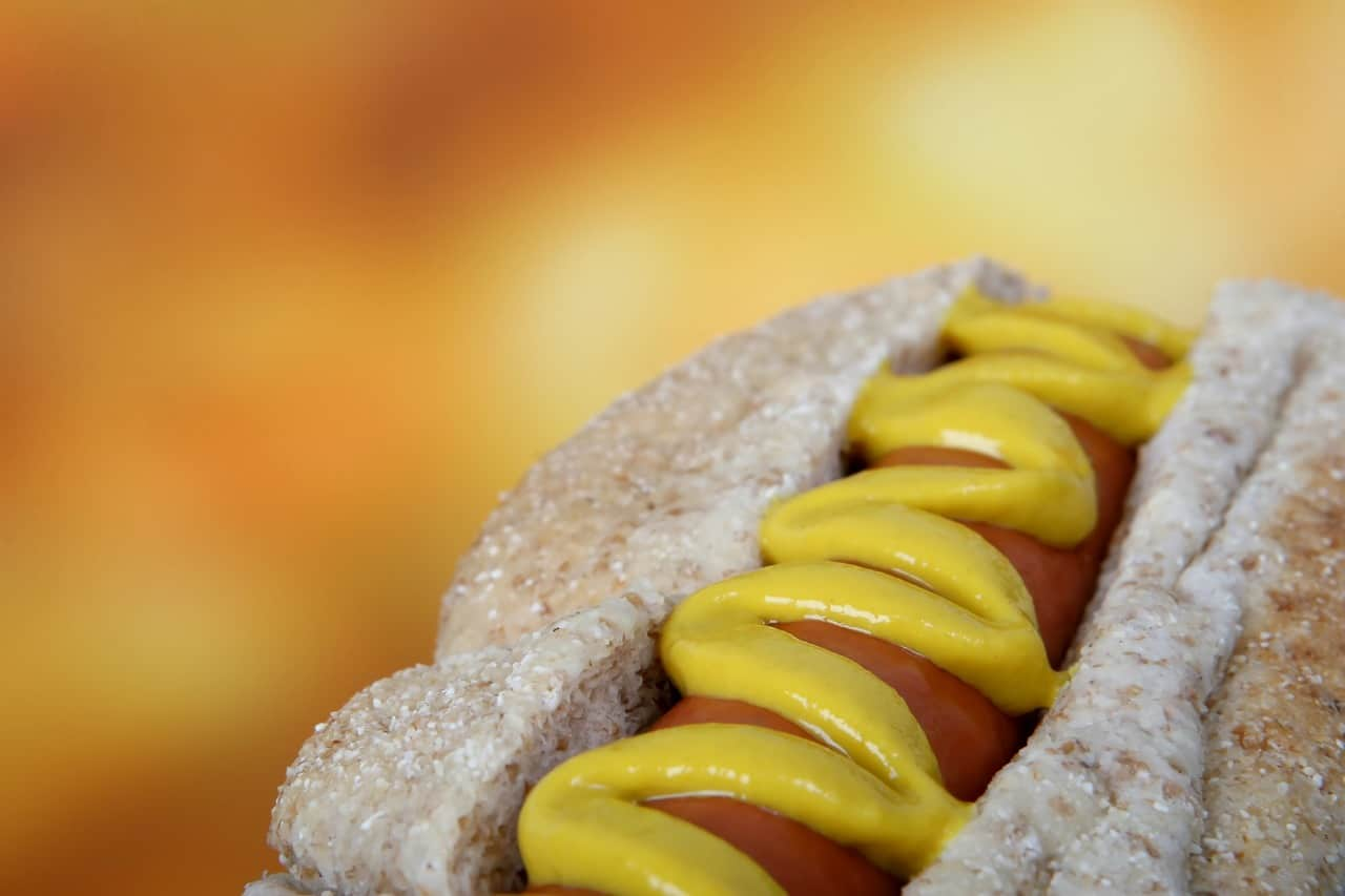 National hotdog day,                 dog beef bread