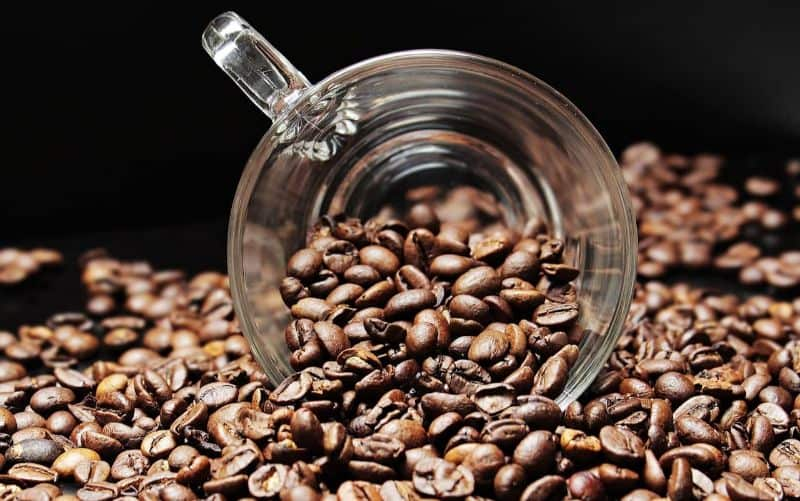 National bean day,                 beans coffee cup cup                coffee coffee beans cafe                coffee beans coffee bean