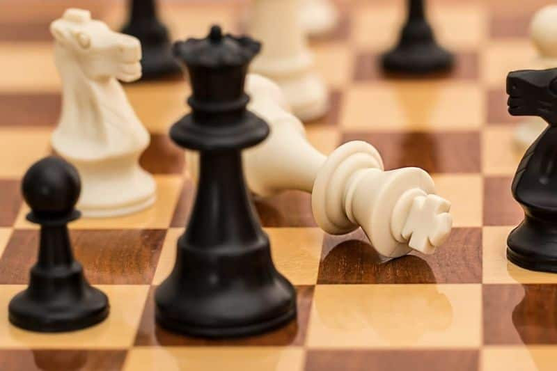 National decision day,                 checkmate chess resignation                chess strategy chess board                grass wilderness green