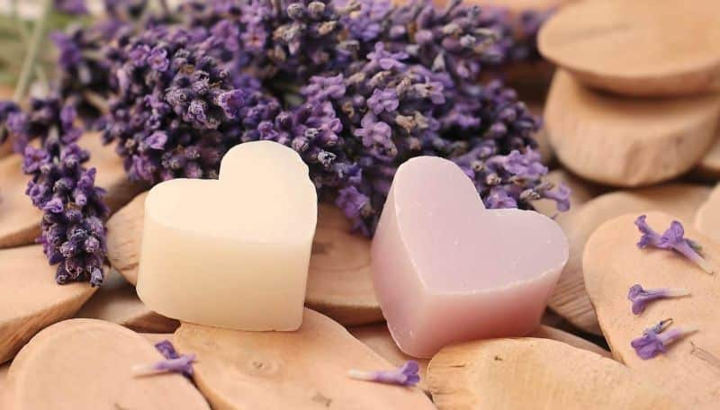 National purple-heart day,                 lavender heart wood                lavender heart wood