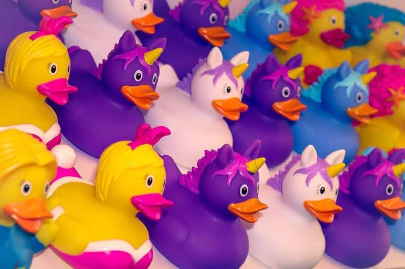 National unicorn day,                 duck bath duck squeak duck